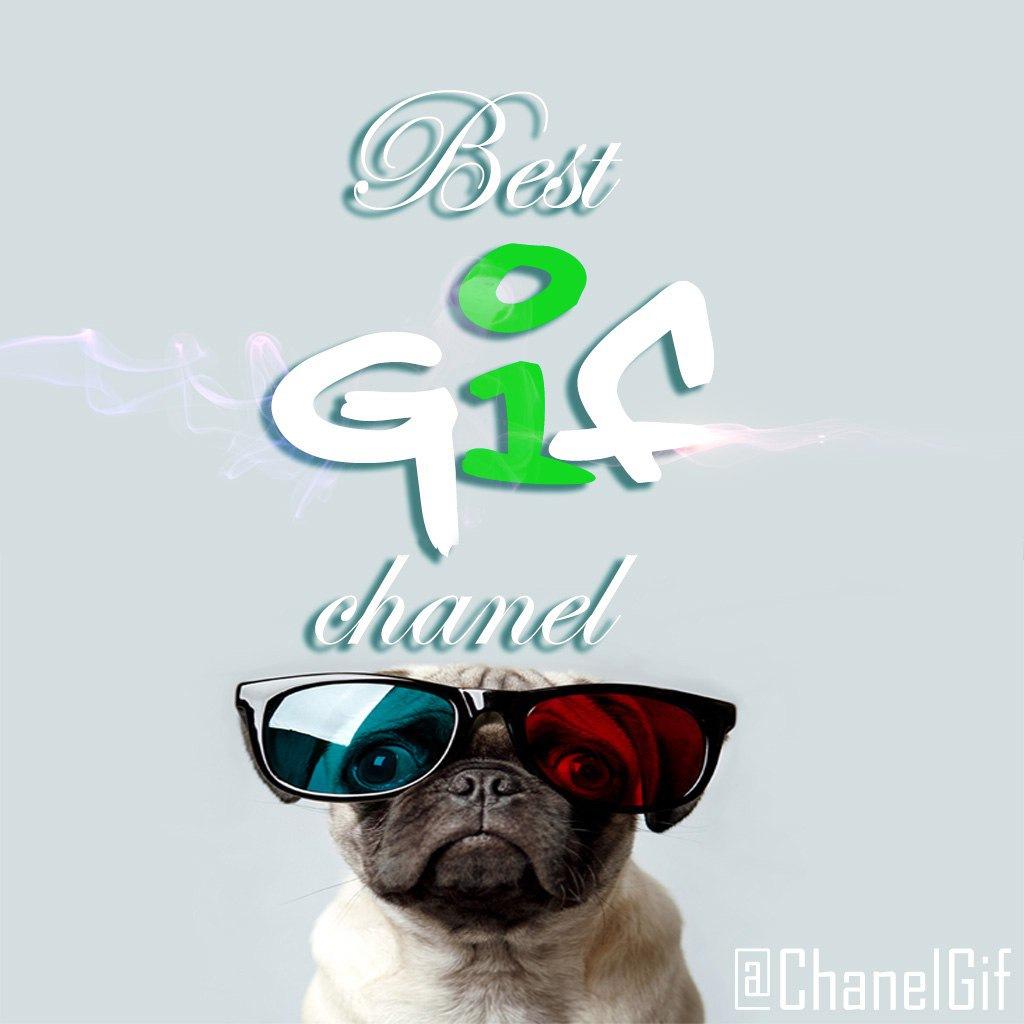 Gif channel for telegram