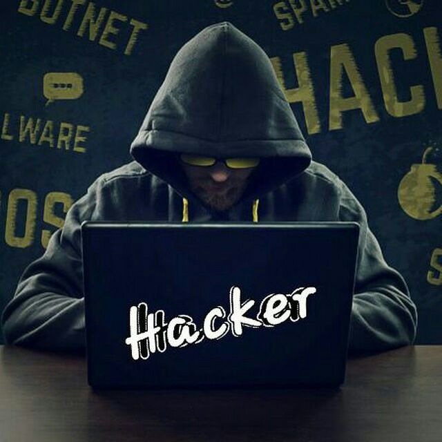 hackersyard - Channel statistics Hackers yard  Telegram